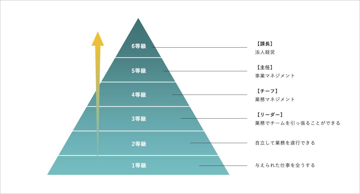 人事考課 階級の図